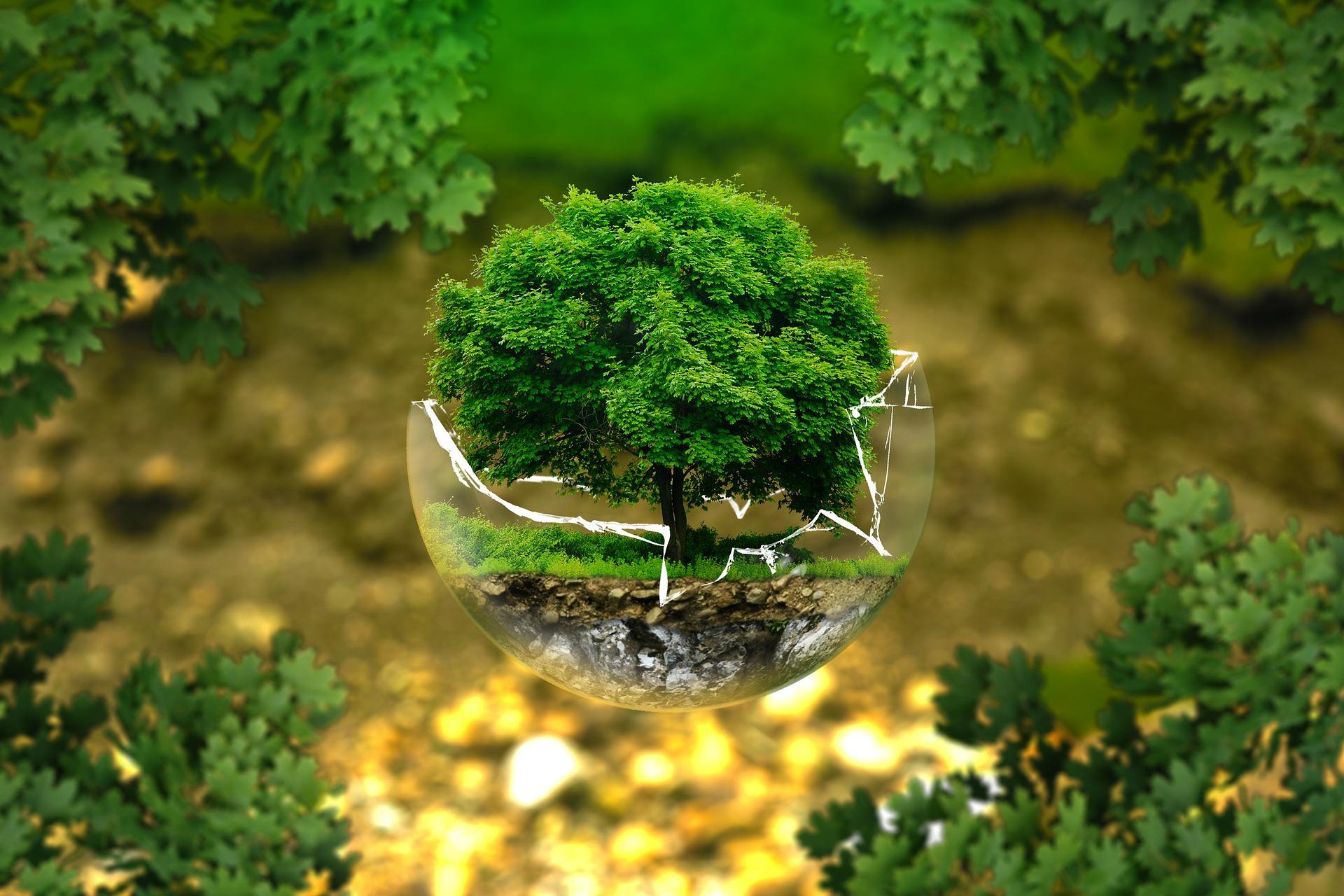 Volvestre, un environnement propre